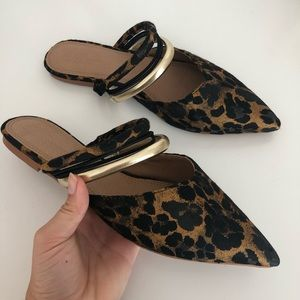 Asos Leopard Print Pointed Toe Mules w/ Straps